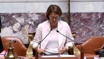 Discours de Ségolène Royal : lecture définitive du projet de loi sur la transition énergétique pour la croissance verte