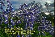 Mt Rainier Music Video - Mount Rainier National Park DVD