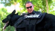 Police K 9 Dog Vests