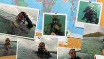 Dive Fiji! Manta Ray Island Dive - Shark feed, Manta Rays, Reef