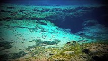 Olympus Pen E-PL2  camera underwater @ Ginnie Springs
