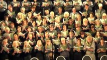 02.07.13. J.Vītola jubilejas koncerts Latvijas Universitātes aulā -2 daļa