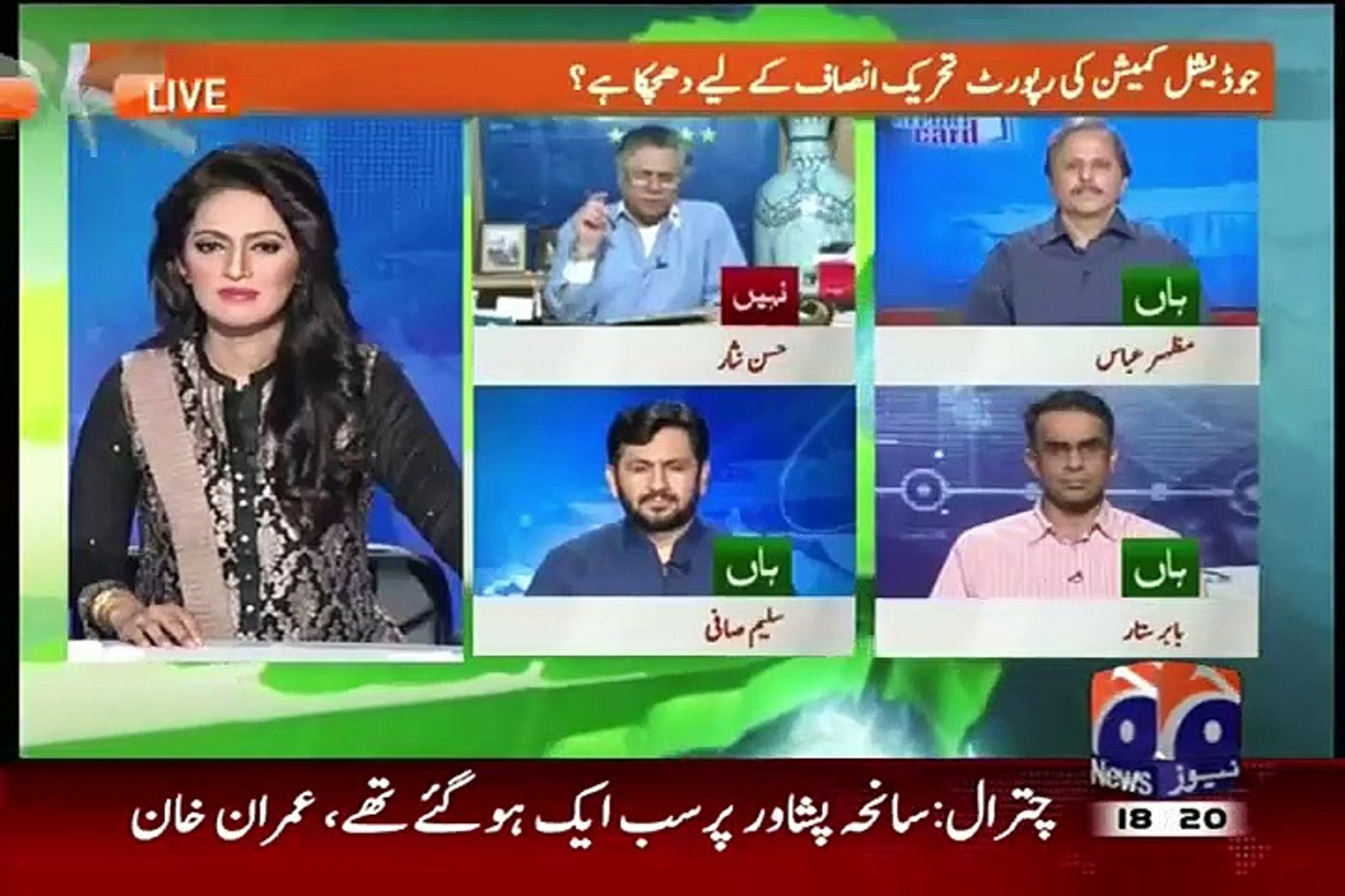 Only mad & blind people can say elections 2013 were transparent-- Hasan Nisar