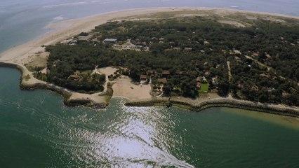 TEASER - Sale temps pour la planète Gironde, un trait sur la côte