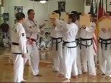Tae Kwon-Do Board Beak by Hand During Black Belt Testing