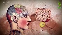 Le ventre, emplacement d'un deuxième cerveau