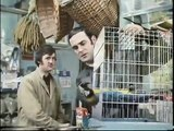 Monty Python - Dead Parrot Sketch + The Lumberjack Song