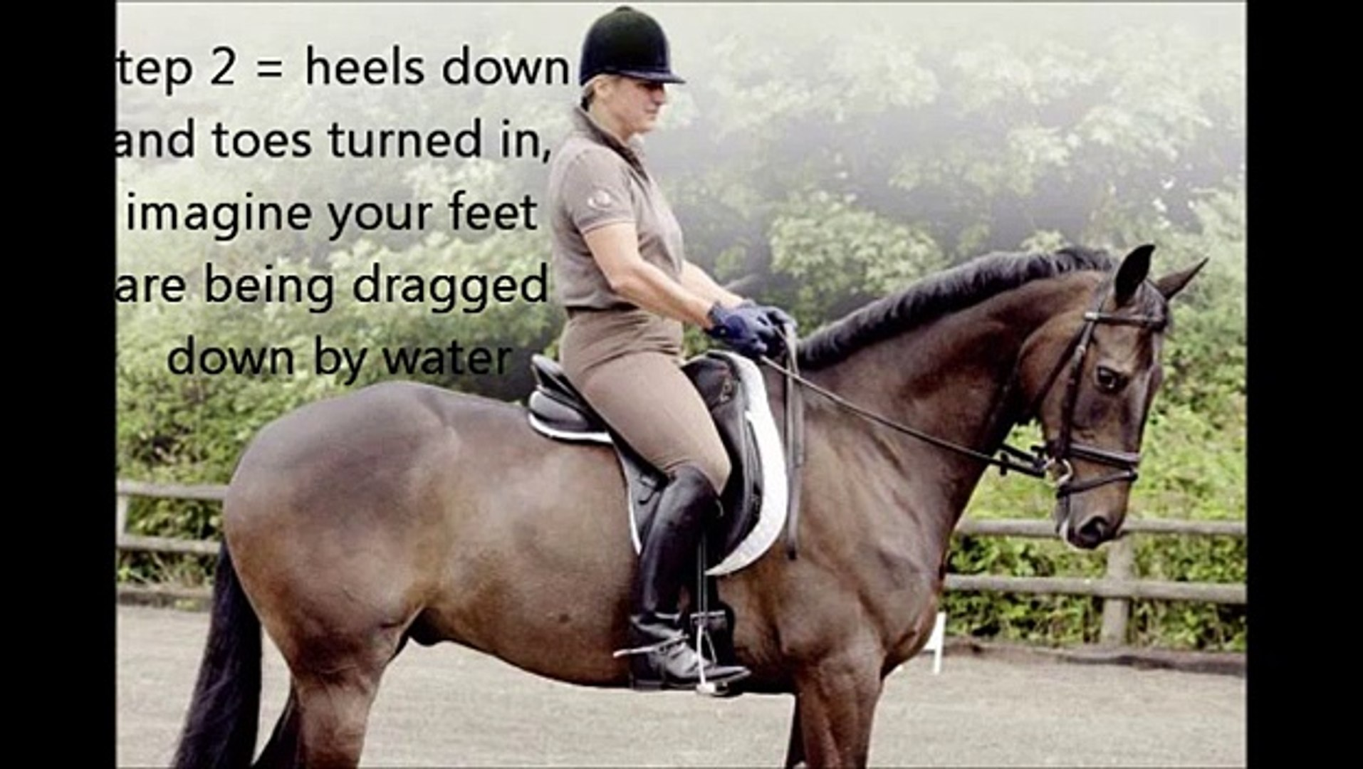 Beginner To Intermediate Tips On Riding Horses Video Dailymotion