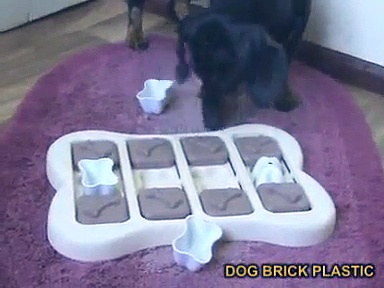 Interactive pet activity toys. DOG BRICK PLASTIC