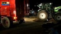 """Crise des éleveurs: """"nuit de détresse"""" dans le Sud, les supermarchés visés"""