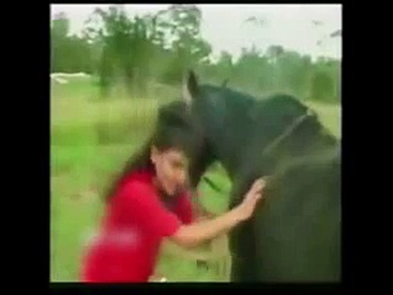 Girl Cross Under Horse Leg Its Hilarious