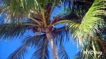 Key West Florida Vacation - Florida Keys - Duval Street - Fury Jet Ski Parasailing Snorkeling