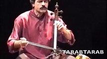 SHAJARIAN KALHOOR ALIZADEH4