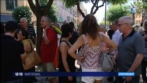 Premier cas de Xylella Fastidiosa en Corse
