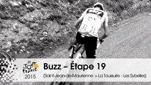 Buzz du jour / Buzz of the day - Étape 19 (Saint-Jean-de-Maurienne > La Toussuire - Les Sybelles) - Tour de France 2015
