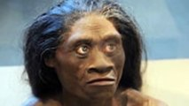 The Hobbits of Flores, Homo Floresiensis were more like humans than originally thought