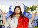 Vangelo del Giorno 23 Luglio 2014 Io sono la vite vera e il Padre mio è l'agricoltore