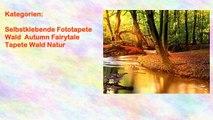 Selbstklebende Fototapete Wald Autumn Fairytale Tapete Wald Natur