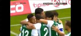 1-0 Markus Pink Goal Austria Bundesliga - 25.07.2015, Mattersburg 1-0 RB Salzburg