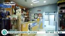 Veterinario especialista Traumatología Barcelona - CanisiFelis Hospital Veterinario