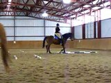 Centered Riding Clinic w/Peggy Brown - April 19, 2009 - Trot work with Murphy