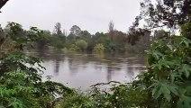 nepean river, Hawksbury bridge and Windsor bridge floods 2012