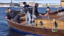 Speciale regata di vela latina