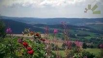 Jetzt endlich auch on air - das Erzgebirge - Erzgebirge|Sachsen, Deutschland - Urlaub - Reise