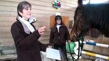 9010 - Pferdesport: Quantenenergie auf dem Pferdehof - Quantenheilung für ein Rennpferd Teil 2