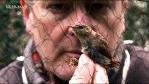Le bagueur d'oiseaux du Jardin des Plantes