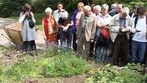 Trésors au jardin alpin (Les propos de jardiniers 5/12)