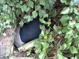 Rescate en Arenales Reyes 08