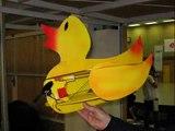 Radio Controlled Flying Ducks