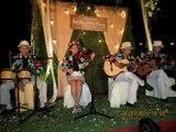 THẦN THOẠI ENLESS LOVE-FOREVER-BEAUTYFUL IN WHITE- Ban nhạc Flamenco Tumbadora Biểu diễn Hòa Tấu Theo Phong Cách Hawaii-Wedding