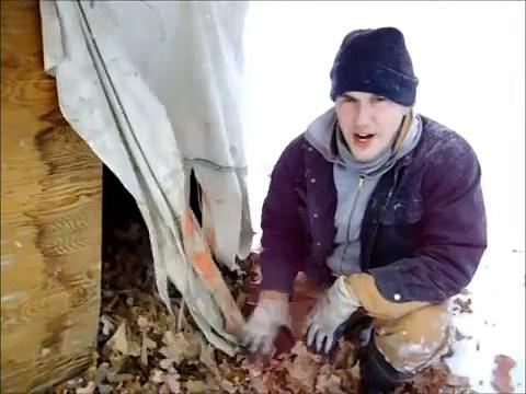 Keeping pigs warm in winter livestock bedding