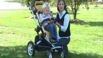 Baby Gizmo Quinny Buzz 4 Stroller Review
