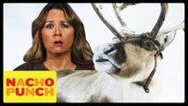 Save The Reindeer with Sarah Mclachlan