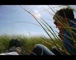 Mimicking Birds - Shellacked InTar