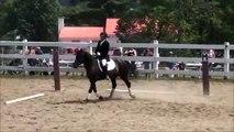 «Canadian horse dressage level 1  KÜR 2011