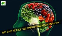 Tips and Tricks for Improving Your Memory | Best Health Tips | Educational Videos