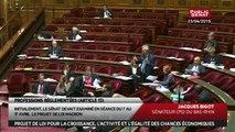Best of sur l'examen des professions réglementées sur le projet de loi Macron - En séance