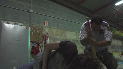 Alma Zombie (2012)
