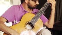 Percussive Guitar - Tolgahan Çoğulu - The Perc-u-Lator (Eric Roche)