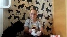 Jak zrobić... dla psa?/ DIY: eko zabawki dla psa