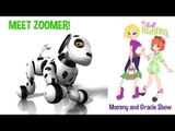 Zoomer Robotic Pet Dog Review