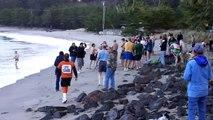 Polar Bear Plunge 2010 Sunset Bay - Coos Bay, OR