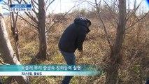 [KNN 뉴스] 도시와 나무 - 토양오염 치유하는 뿌리