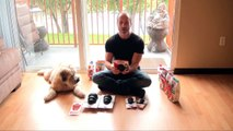 KONG Extreme Rubber Chew Dog Toy Review - How to Stuff & Is It For Your Dog