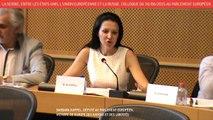 La Serbie, entre les États-Unis, l'UE et la Russie - Colloque du 30/06/2015 à Bruxelles. Troisième partie