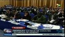 Evo Morales en defensa de la hoja de coca ante la ONU